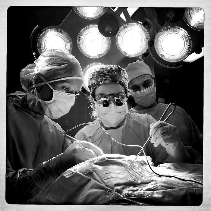 דוקטור רוית ינקו ארזי - תמונת פרופיל